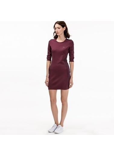 Kısa Kalem Elbise-Lacoste